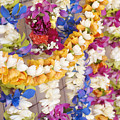 Assorted Hawaiian Leis by Ron Dahlquist - Printscapes