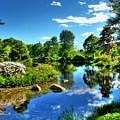 Asticou Gardens 1 by Carol Christopher