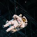Astronaut by Ginger Stein