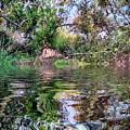 At Blackwater Pond  by Jenny Revitz Soper