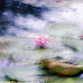 At Claude Monet's Water Garden 12 by Dubi Roman