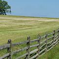 At Gettysburg by Donald C Morgan