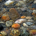 At Rest Within The Streaming Tide by Lynda Lehmann