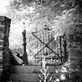 At The Old Gate by Bill Cannon