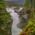 Athabasca Falls by Edie Ann Mendenhall