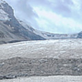 Athabasca Glacier, Jasper National Park by Patricia Hofmeester