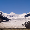 Athabasca Glacier by Tracy Knauer