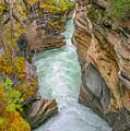 Athabasca River Canyon by Edie Ann Mendenhall