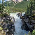 Athabaska Falls, Mt. Hardisty by Daryl L Hunter