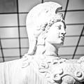Athena by Paolo Modena