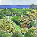 Atiu Lake View by Judith Kunzle