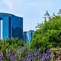 Atlanta Skyline From Atlanta Botanical Garden by Mary Ann Artz