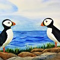 Atlantic Puffins by Don Whitesel