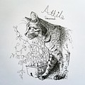 Attila by Pookie Pet Portraits