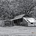 Auburn Barn by William Havle