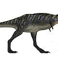 Aucasaurus Dinosaur Isolated On White by Elena Duvernay