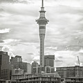 Auckland New Zealand Sky Tower Bw Texture by Joan Carroll