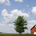 August Flatland Reds by Dylan Punke