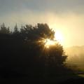 August Fog Sunrise Light Rays by Kent Lorentzen