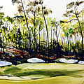 Augusta 2 by Mark Robinson