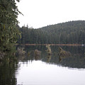 Auke Lake by Jeffrey Ober