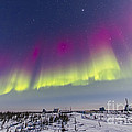 Aurora Borealis Seen From Churchill by Alan Dyer