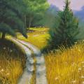 Austin's Way by Wynn Creasy