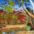 Australian Billabong by Rob Convery