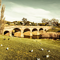 Australian Bridges by Jorgo Photography - Wall Art Gallery