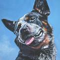 Australian Cattle Dog 2 by Lee Ann Shepard