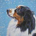 Australian Shepherd In Snow by Lee Ann Shepard