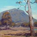 Australian Summer Hartley by Graham Gercken