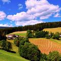Austrian Rural Forest Vista by Pixabay