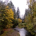 Autum In Oregon by Jan St Clair