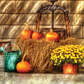 Autumn - Pumpkin - A Still Life With Pumpkins by Mike Savad