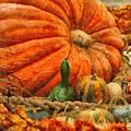 Autumn - Pumpkin - Great Gourds by Mike Savad