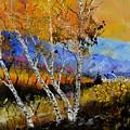 Autumn 61301 by Pol Ledent