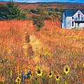 Autumn Abandoned House In The Prairie by Anna Louise