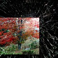 Autumn Abstraction by Jim Vance