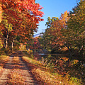 Autumn Along The Canal by Paul R Sell Jr