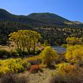 Autumn Along The Rio Grande by Carl Paulson