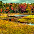 Autumn Along The River by David Patterson