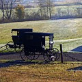 Autumn Amish Horse Buggy by Charlene Cox