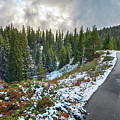 Autumn And Winter In One by Tihomir Dimitrov