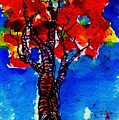 Autumn by Anne Duke