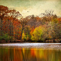Autumn Arises 2 by Jessica Jenney