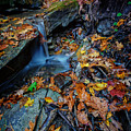 Autumn At A Mountain Stream by Rick Berk