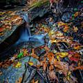 Autumn At A Mountain Stream by Rick Berk