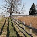 Autumn At Antietam by William Kuta