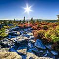 Autumn At Bear Rocks by Thomas R Fletcher